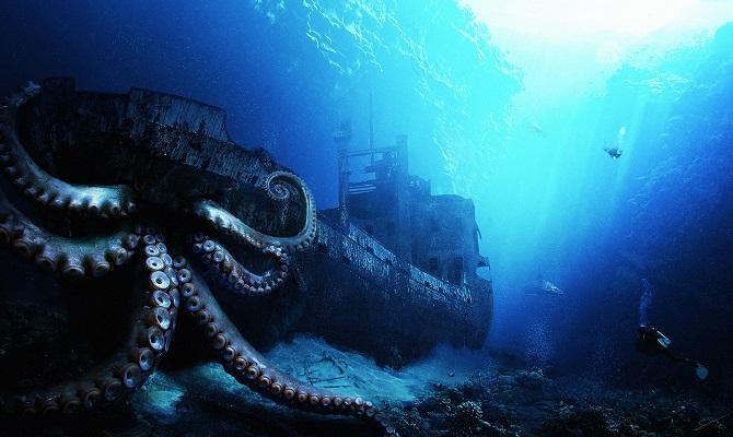 deep sea animal
